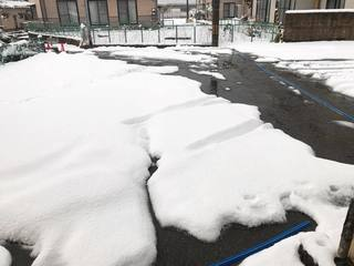 駐車場、雪がめちゃ積もってる
