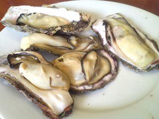 七尾の牡蠣.jpg